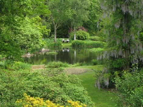 Landelijke romantische type for Landelijke tuin aanleggen